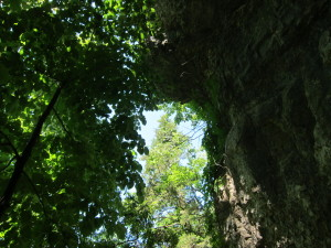 Looking up once out of the cave.